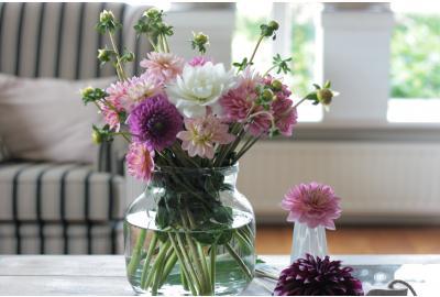 Wie habe ich möglichst lange Freude an Schnittblumen?