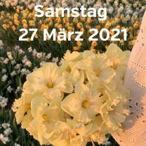 Besuch Narzissenfelder 27 Marz 2021