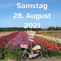 Besuch Dahlienfelder 28. August 2021
