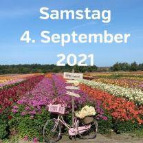 Besuch Dahlienfelder 4. September 2021