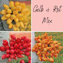 Gelb & Rot Mix