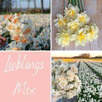 Lieblings Mix