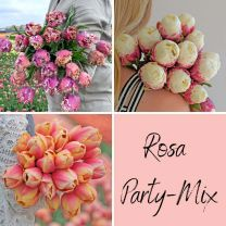 Rosa Party Mix