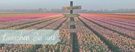 besuchen Sie unsere Blumenfelder